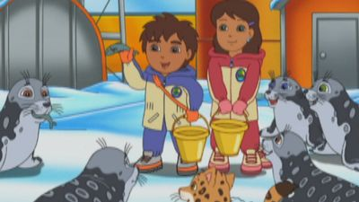 Watch Ringed Seal Rescue Video Go Diego Go S4 Ep406