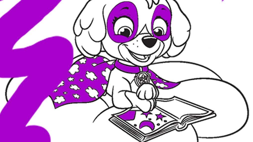 PAW Patrol Skye Reading Colouring