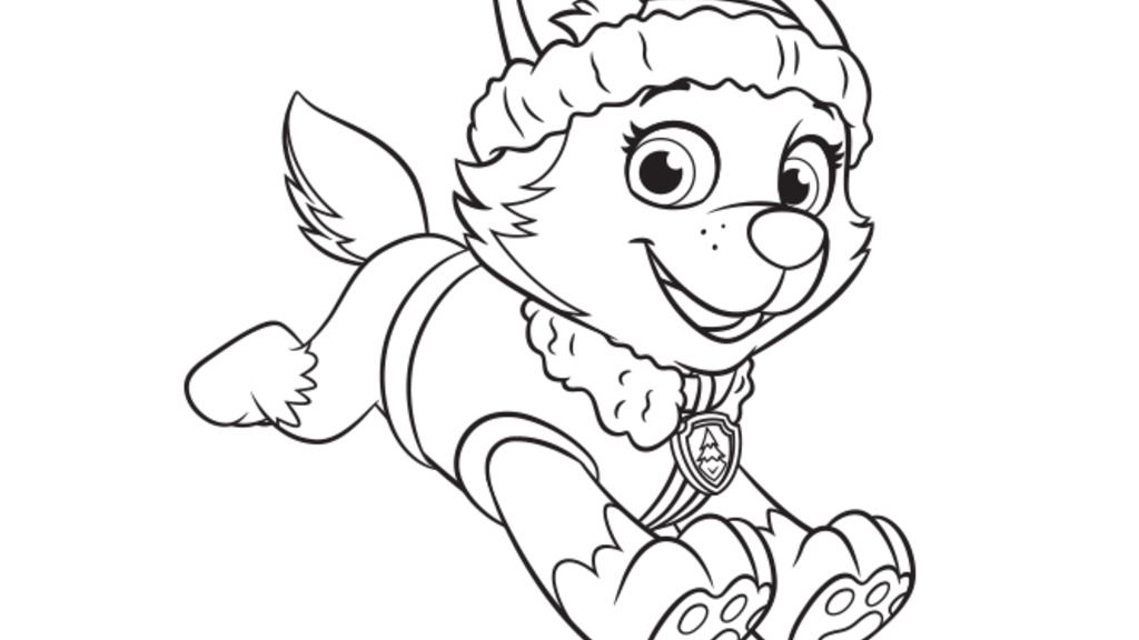 PAW PatrolEverest Colouring Pages for Preschoolers Nick Jr UK