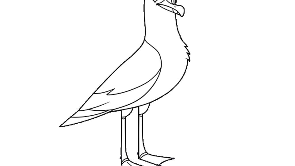 Puffin Rock Seagull Colouring Pages For Preschoolers