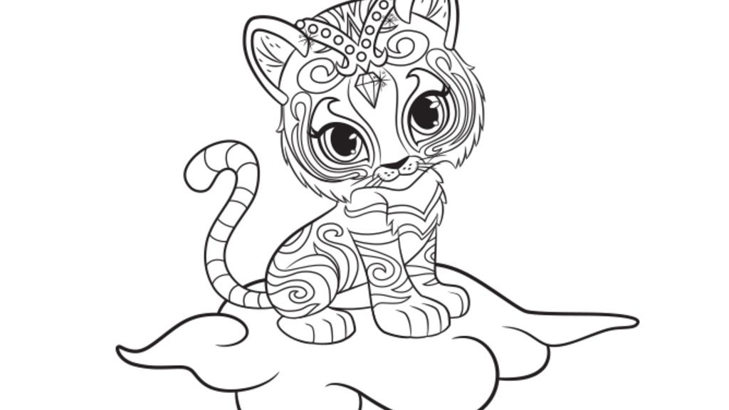 Shimmer and Shine Nahal Colouring Page