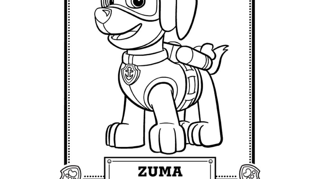 Paw Patrol Paw Patrol Meet Zuma Colouring Pages For
