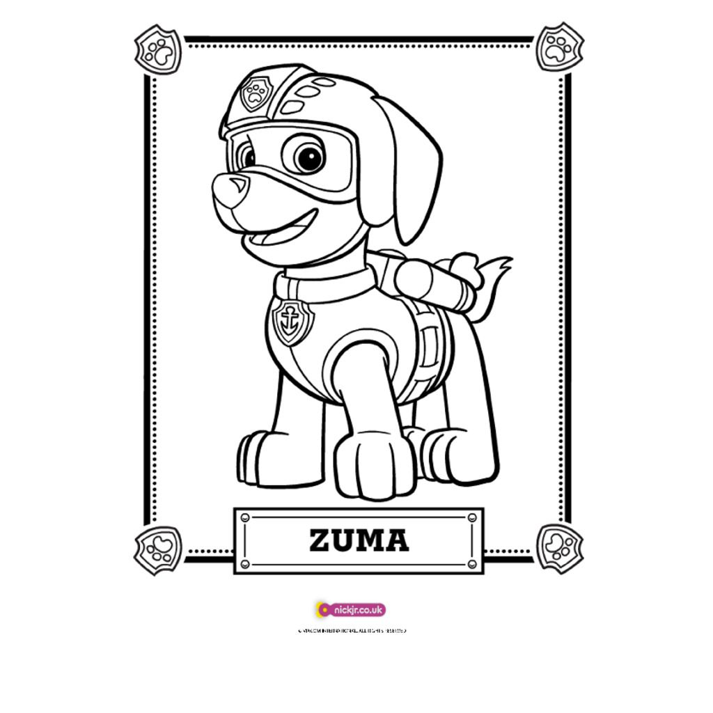 PAW Patrol|PAW Patrol   Meet Zuma: Colouring Pages For Preschoolers