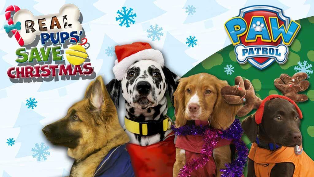 Pups Save Christmas.Real Pups Save Christmas