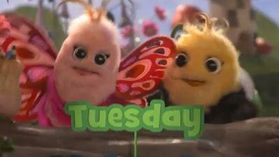 "Didi & B: Songs - ""Tuesday Song""   Didi and B. : Video on Nick Jr. Austalia   Nick Jr Australia"