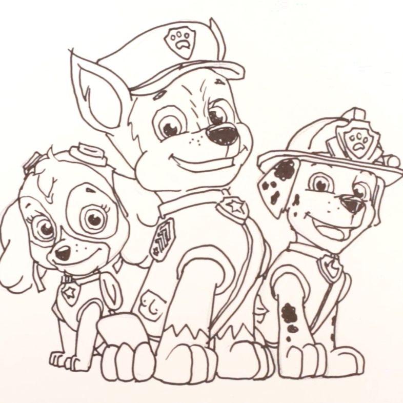 1 2 3 Disegnare Marshall