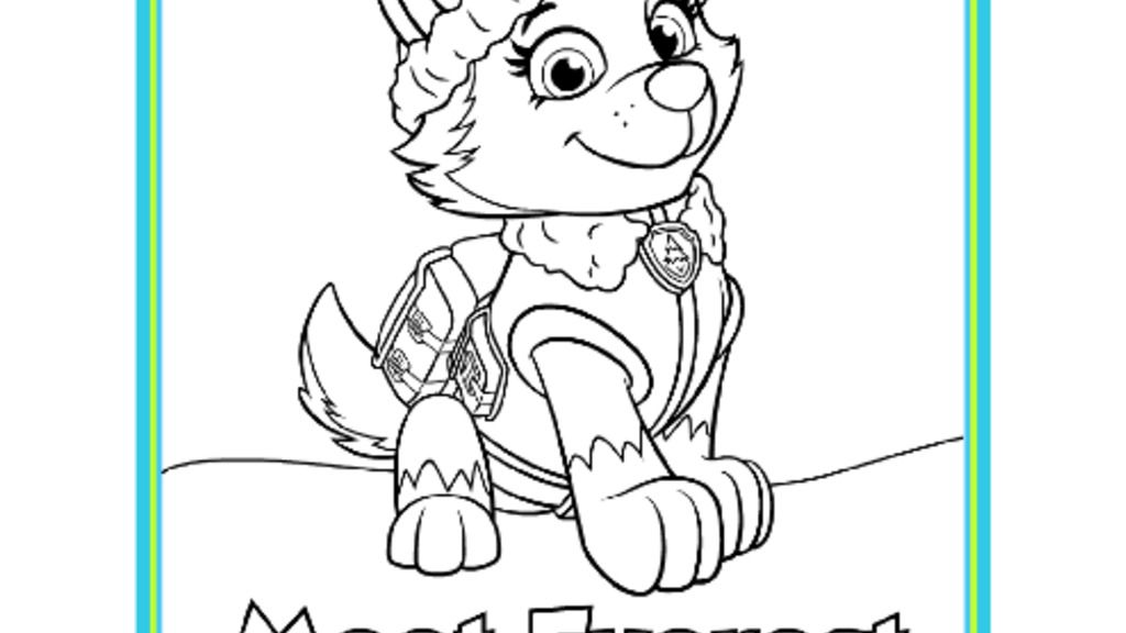 Paw Patrol Meet Everest Colouring Pack Pages